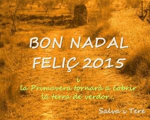 BON NADAL 2015
